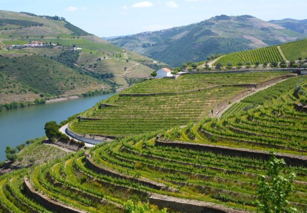 Day 3 - Cruising the Douro River, Régua, Pinhão