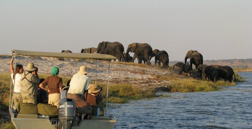 AmaWaterways Zambezi Queen Water Safari Boat