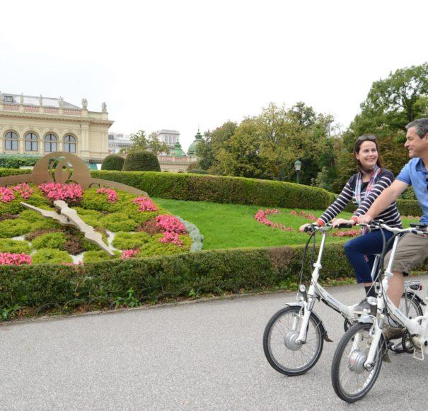 Scenic E Bikes