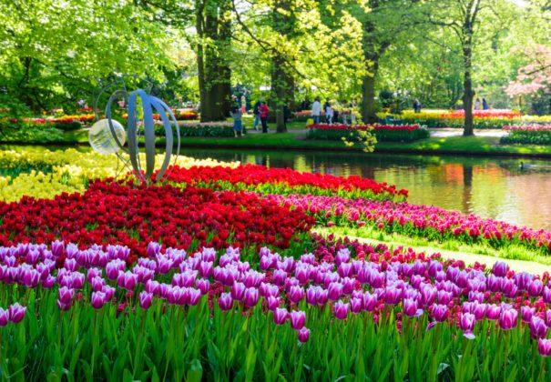 Day 6 - Utrecht to Zaandam