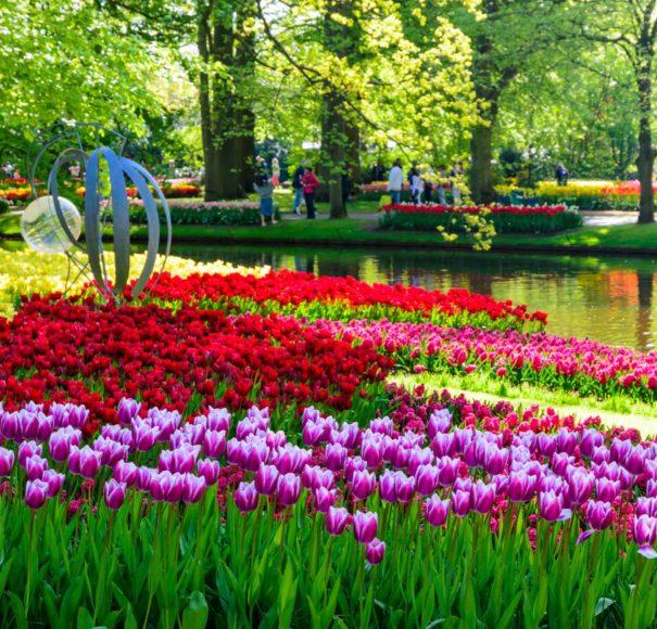 Keukenhof park, Netherlands