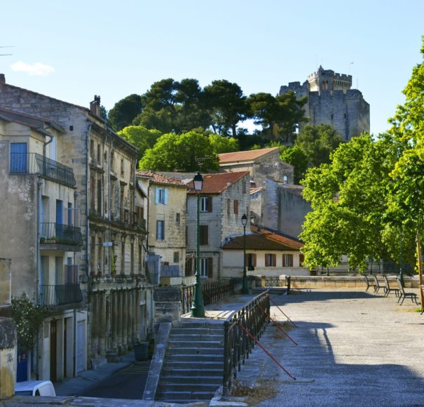 Rhone - View on medieval castle of Tarascon, France