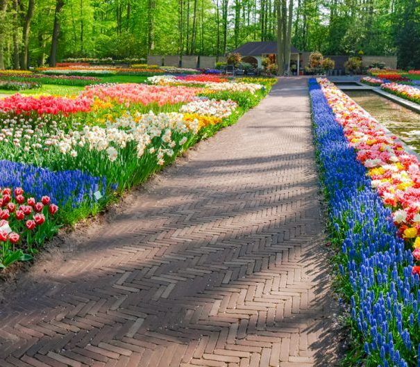 Dutch Waterways Keukenhof Park Panorama