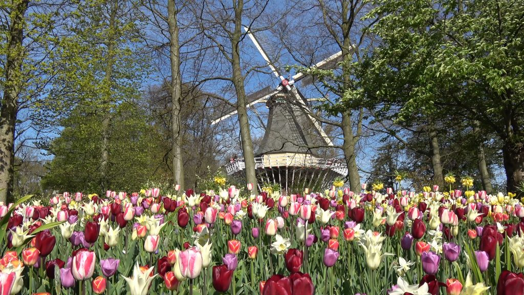 Keukenhof Kitchen Garden Holland