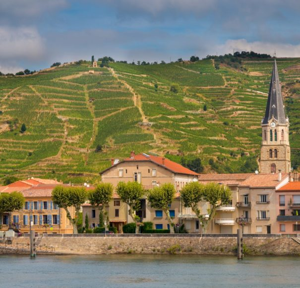 APT River Cruise Rhone - Vineyards on the Hills of the Cote du Rhone France