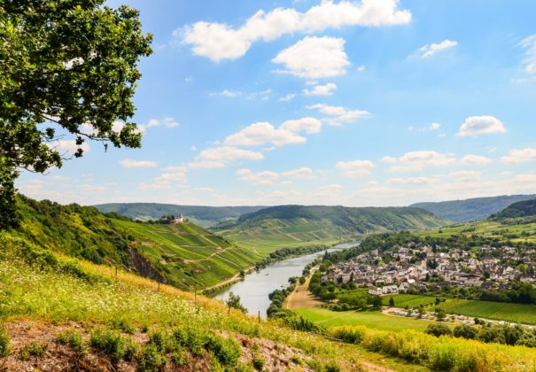 Day 7 - Moselle Valley Cruising