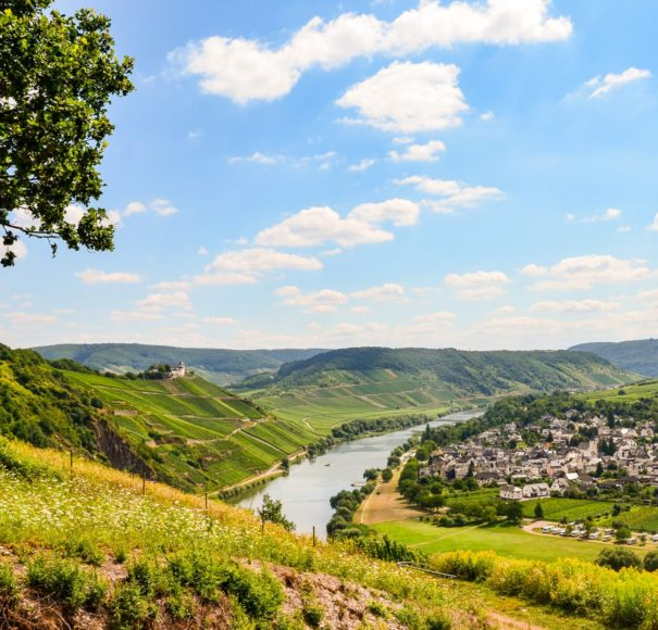 River Moselle and Marienburg Castle near village Puenderich