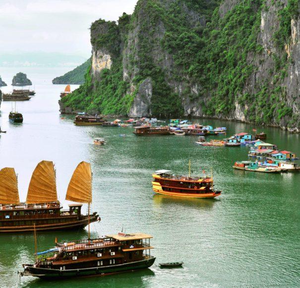 Ha Long Bay - Sailing Junks