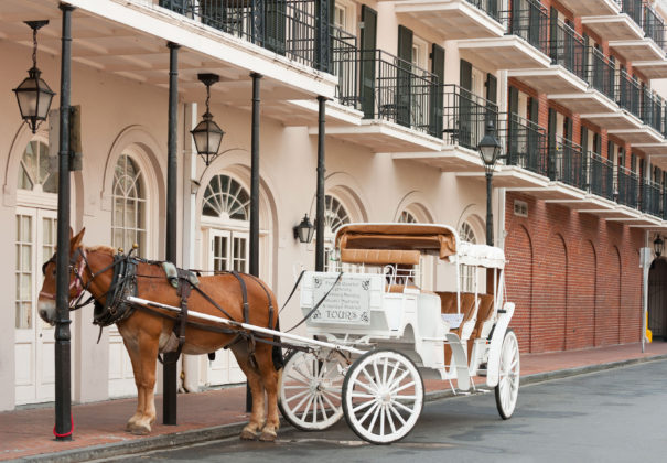 Day 23 - New Orleans
