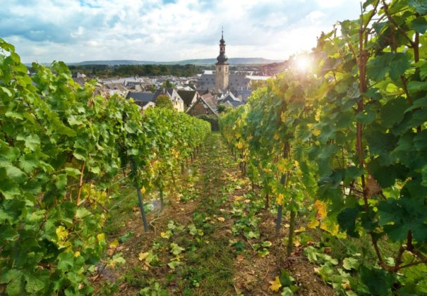 Day 3 - Lorelei Passage - Rudesheim